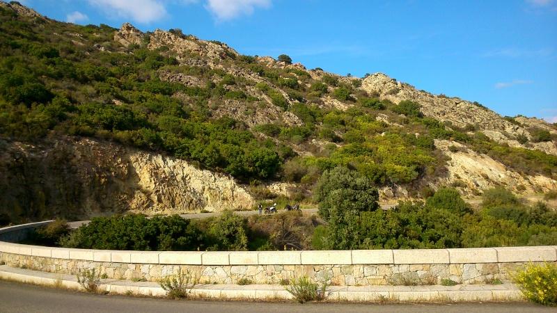 La Batsetori en Corse  - Page 3 Dsc_2039