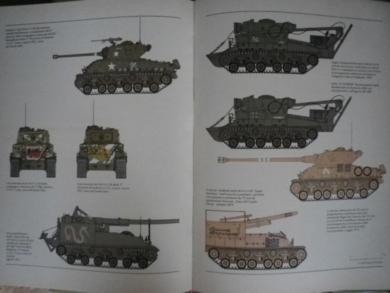 Historique et description du M4A3 Sherman Howitzer Imgp7812
