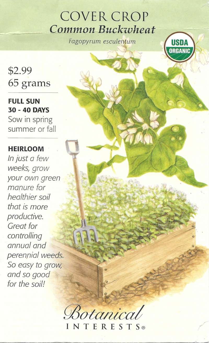 Cover Crops?? - Page 2 Buckwh17