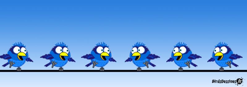 Les Birds - Page 13 14426410
