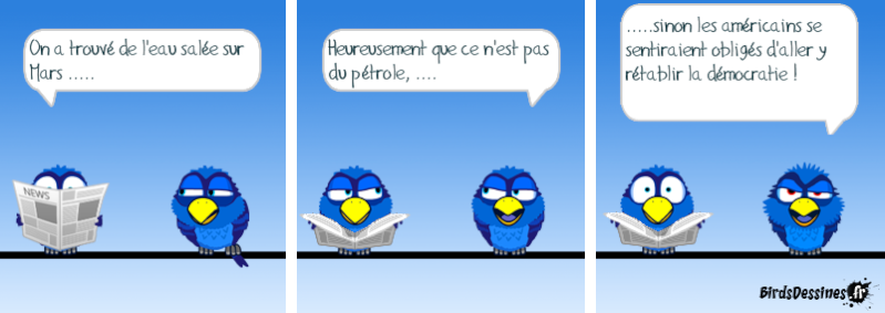 Les Birds - Page 13 14437310