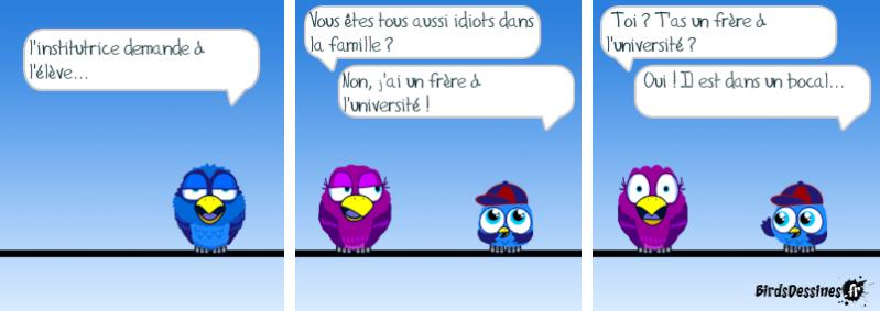 Les Birds - Page 13 14468810