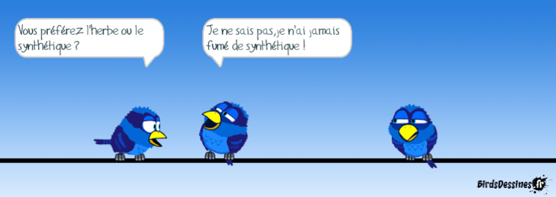 Les Birds - Page 13 14468811