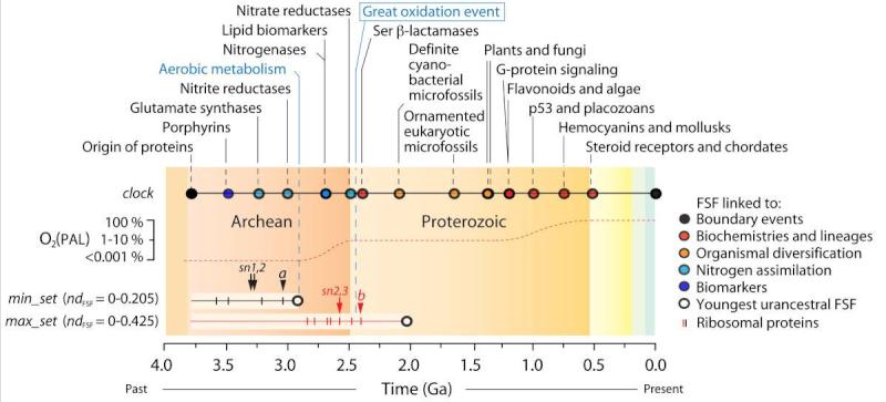 Abiogenesis: LUCA—The Last Universal Common Ancestor Erewrw10