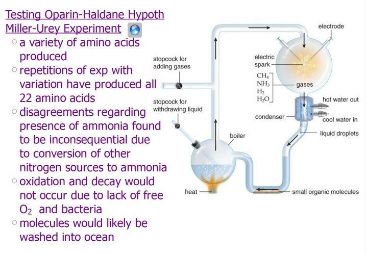 The naturalistic approach of origin of life scenarios Origin11