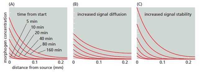 Development of Multicellular Organisms Signal14