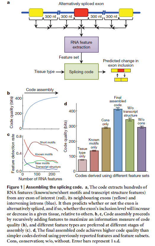 The spliceosome , the splicing code, and pre - mRNA processing in eukaryotic cells Splici11