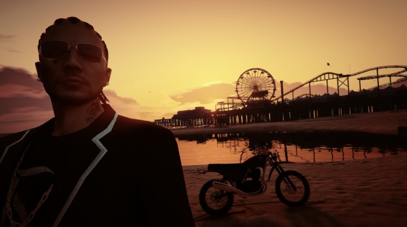 GTA V: Photos et selfies - Page 3 Style_10