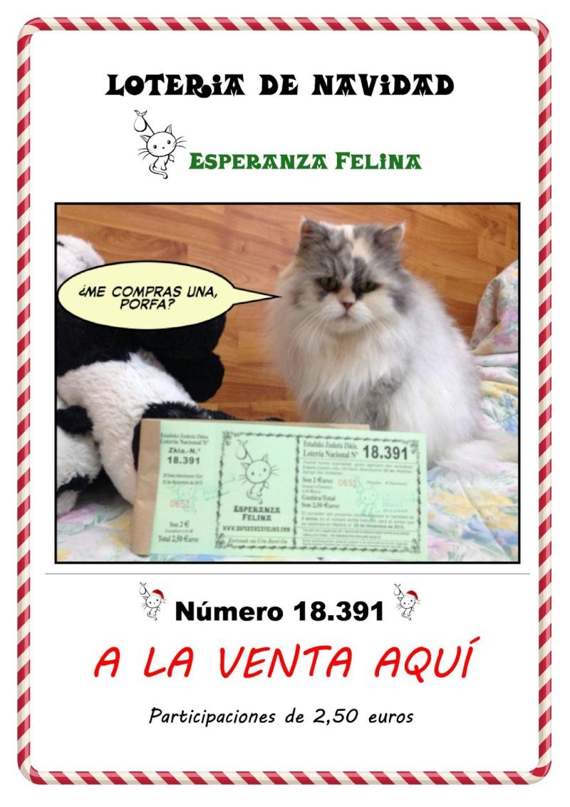 Loteria Navidad Esperanza Felina 2015 Cartel12