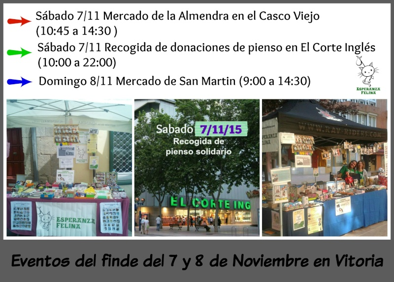 Esperanza Felina en el Mercadillo de San Martin. Domingo 8 de Noviembre de 2015 Picmon26