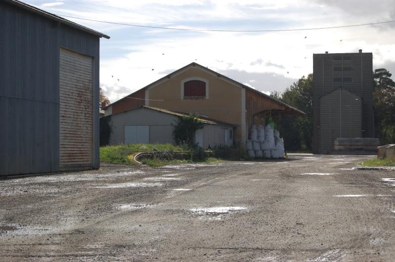 Ligne de Châteauroux à Montluçon Dsc_1318