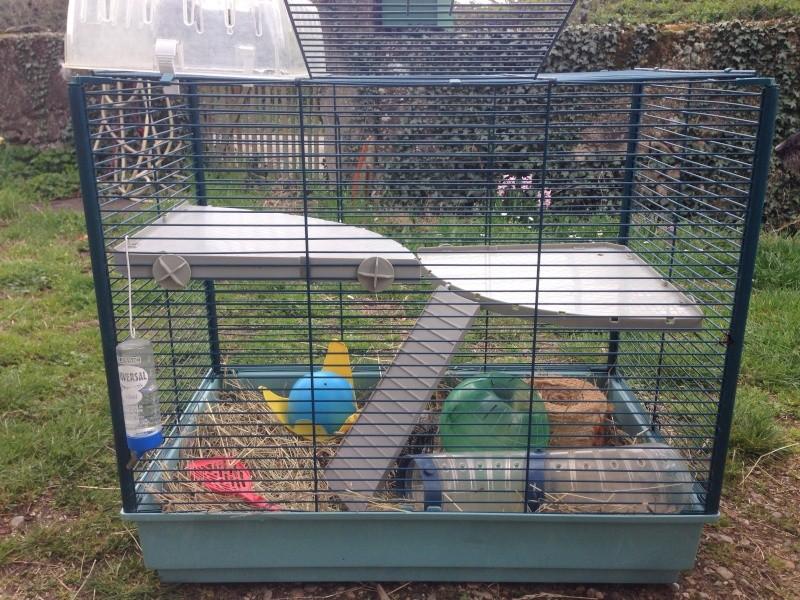 Vends cage faire offre  Image11