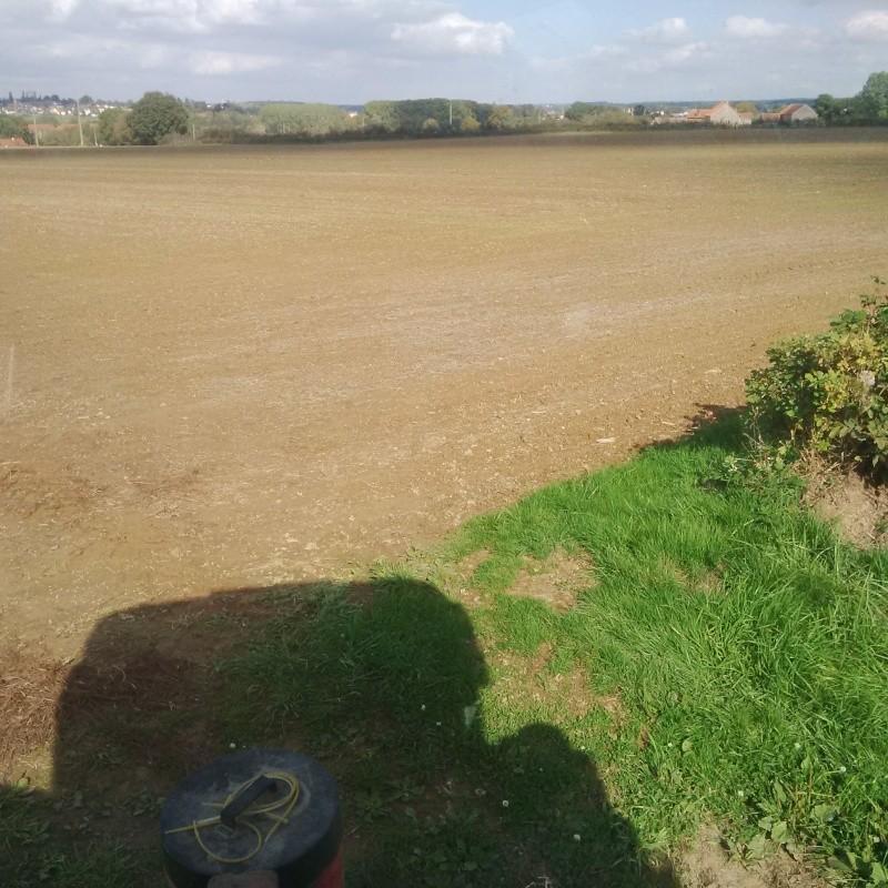 Debut des semis de blé Le910110