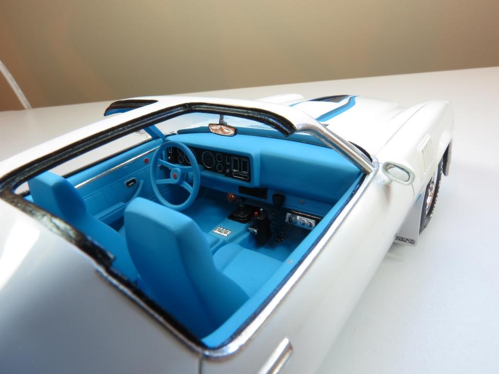 Trans Am '78, Camaro '79 Img_2112