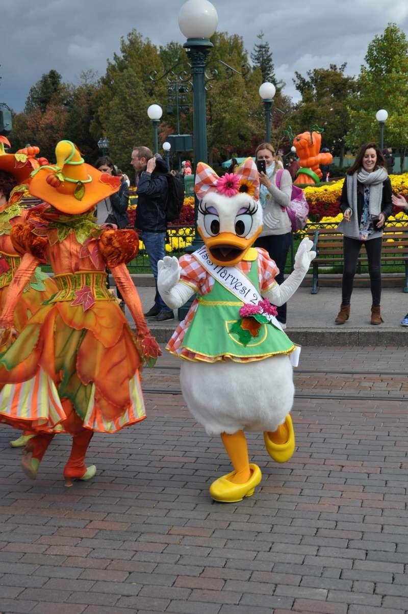 Halloween 2015 - Du 1er Octobre au 1er Novembre - Page 7 Disney63