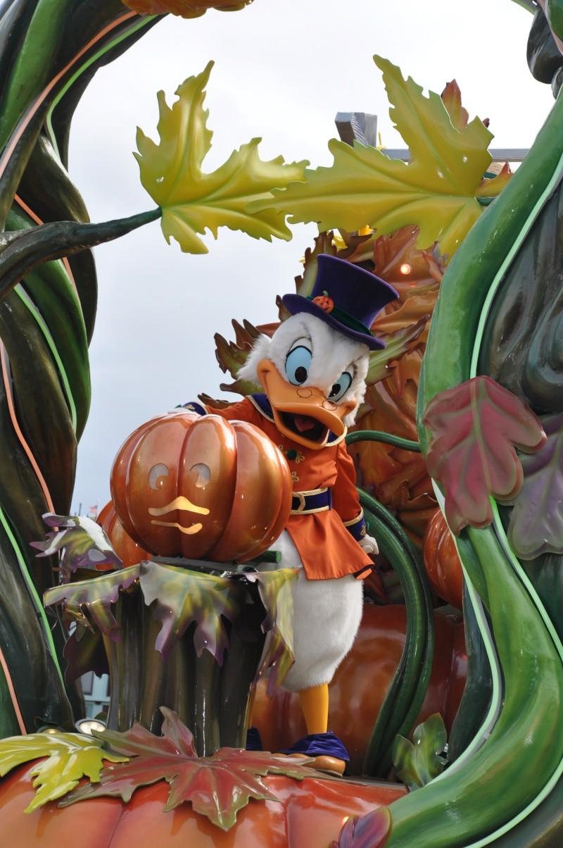 Halloween 2015 - Du 1er Octobre au 1er Novembre - Page 7 Disney66