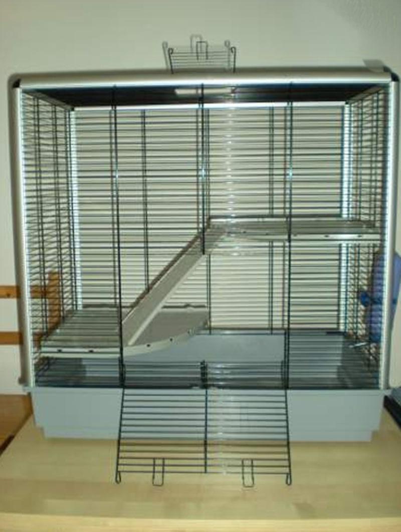JENNY KD + Grande cage Plexi Lacage10
