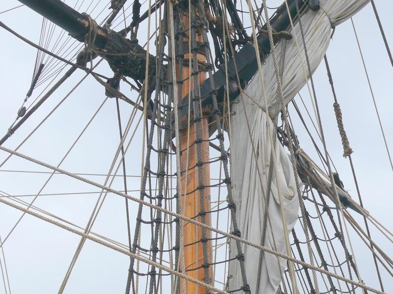 L'HERMIONE en escale à Brest du 12 au 17 Aout 2015 - Page 3 L_her171