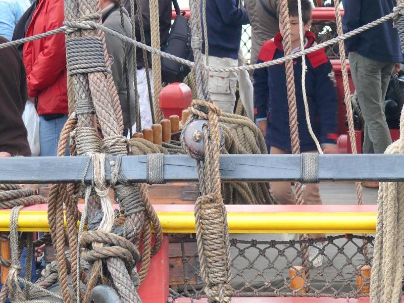 L'HERMIONE en escale à Brest du 12 au 17 Aout 2015 - Page 3 L_her206