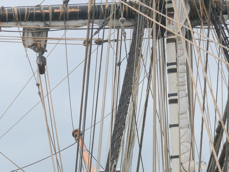 L'HERMIONE en escale à Brest du 12 au 17 Aout 2015 - Page 3 L_herm68