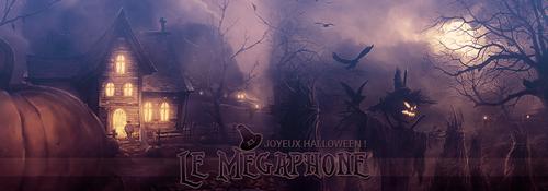 banniere_megaphone