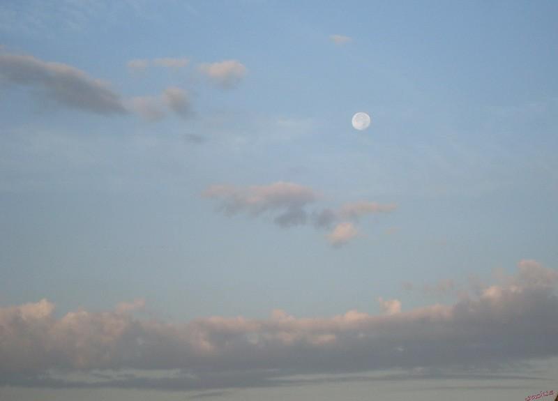 Lune Dsc06413