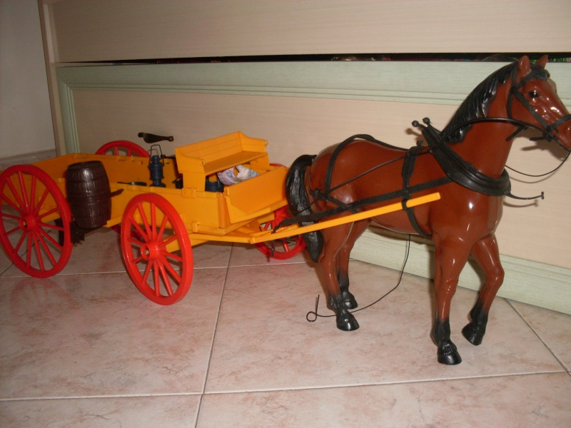 carrozza far west Valent11
