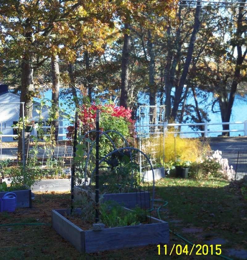 New England...Nov. 2015 00512