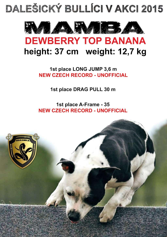 Balthazar, Umberto, Dewberry from Czech Republic - Page 2 Dbm10