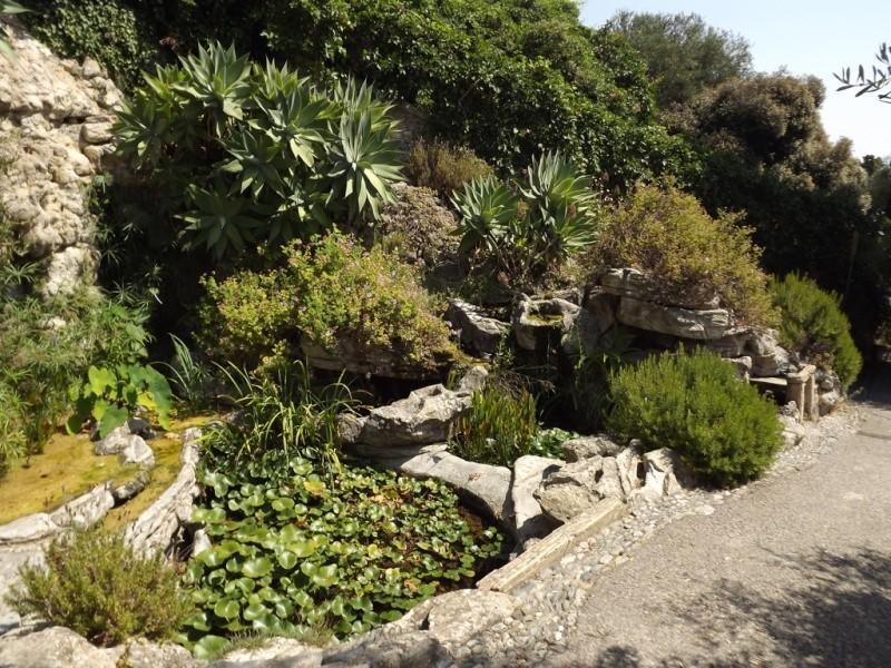 (Italie) Giardini Botanici Hanbury - Mortola Hanbur29