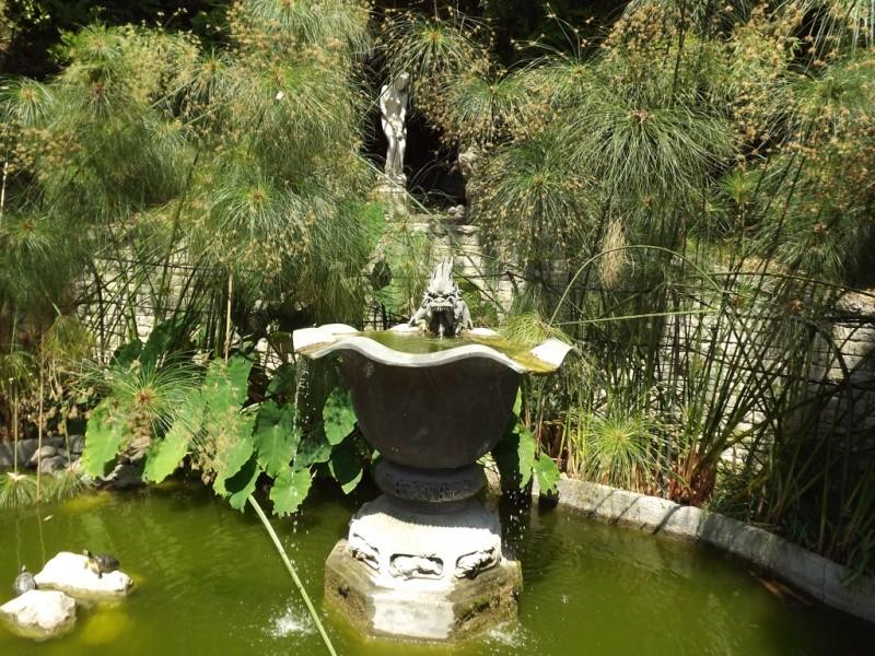 (Italie) Giardini Botanici Hanbury - Mortola Hanbur38