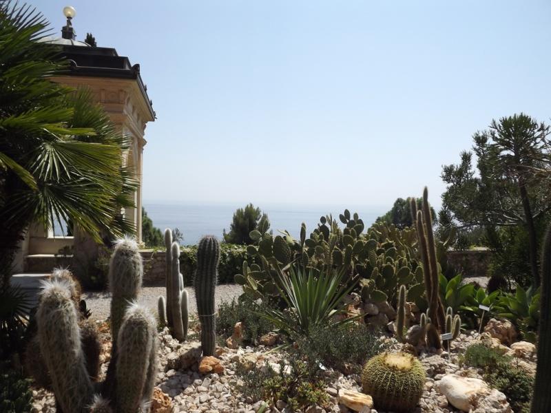 (Italie) Giardini Botanici Hanbury - Mortola Hanbur42