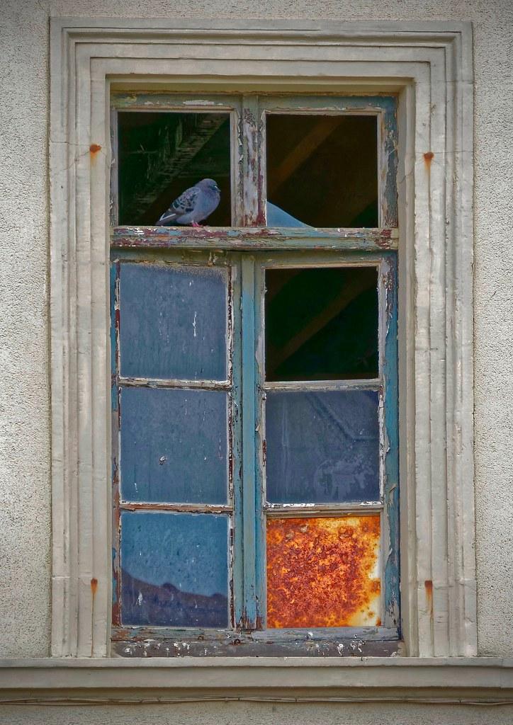 [Fil ouvert ] Fenêtres, volets, ouvertures... - Page 11 49426611