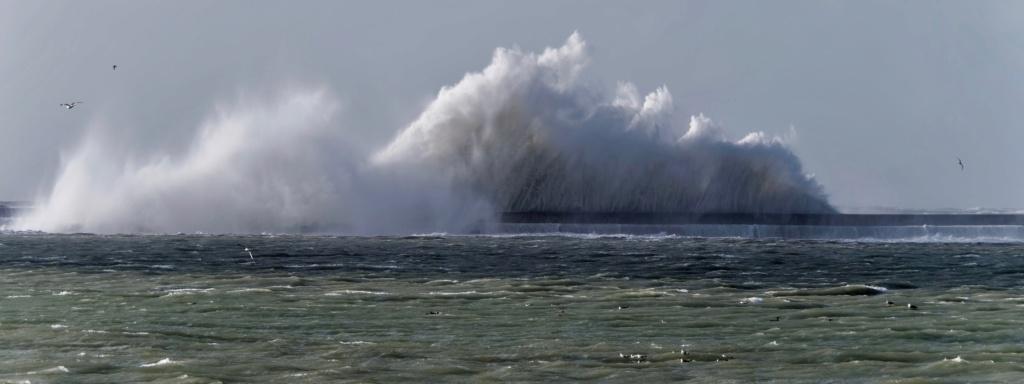 Tempête Jorge à Boulogne/mer (et ajouts) P1009410