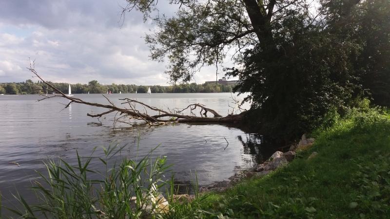 [bank] Vos photos de référence perso : Environnements naturels 20150912
