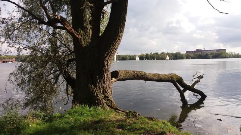 [bank] Vos photos de référence perso : Environnements naturels 20150915