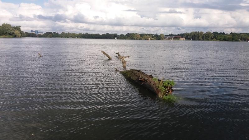 [bank] Vos photos de référence perso : Environnements naturels 20150916