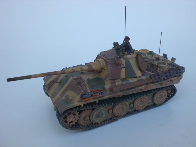 Es ist kein Mensch, es ist kein Tier. Es ist ein deutscher Panzergrenadier!  - Seite 3 Cimg4920