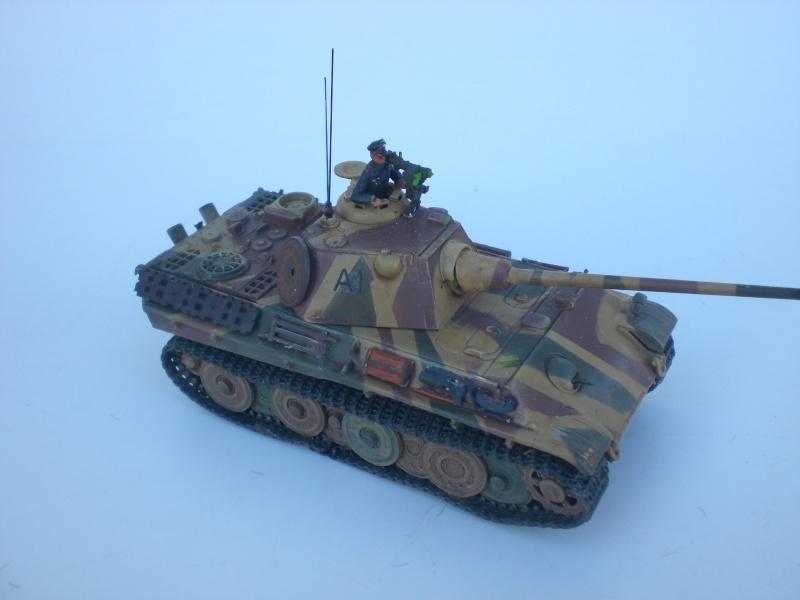Es ist kein Mensch, es ist kein Tier. Es ist ein deutscher Panzergrenadier!  - Seite 3 Cimg4921