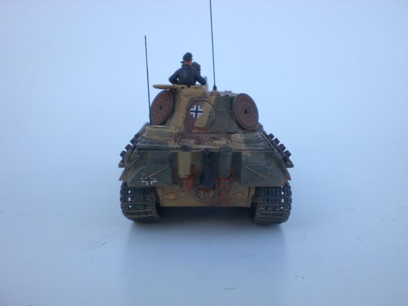 Es ist kein Mensch, es ist kein Tier. Es ist ein deutscher Panzergrenadier!  - Seite 3 Cimg4923