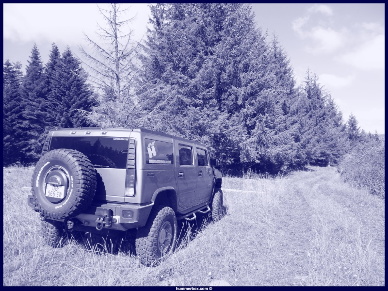 Grizou est arrivé ; Hummer H2 luxury greystone & sedona - Page 6 Sam_0211