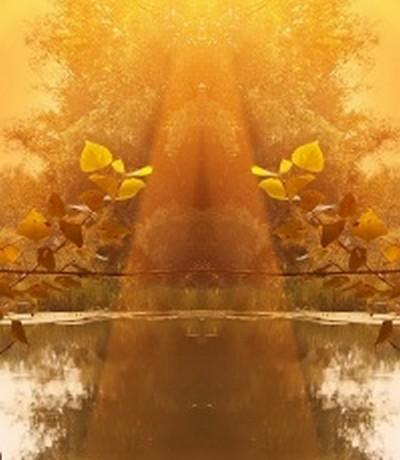 Apparition d'un Esprit de la Nature ou Esprit du lieu ? Esprit10