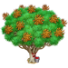 Vous cherchez un arbre ? Venez cliquer ici !!! Dragon12