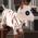 Chèvre Blanche / Super chèvre / Chèvre Valentine / Chèvre de Noël / Chèvre d'Halloween / Chèvre Italienne / Chevragon => Lait de Chèvre Mummyg10