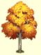 Habitat Pivert => Ecorce d'arbre blanc Sans_178
