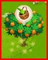 Récolter vos arbres [les paniers] Sans_t10