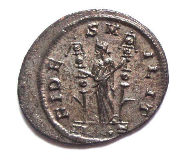aurelianus Probus Ticinium 336a0a10