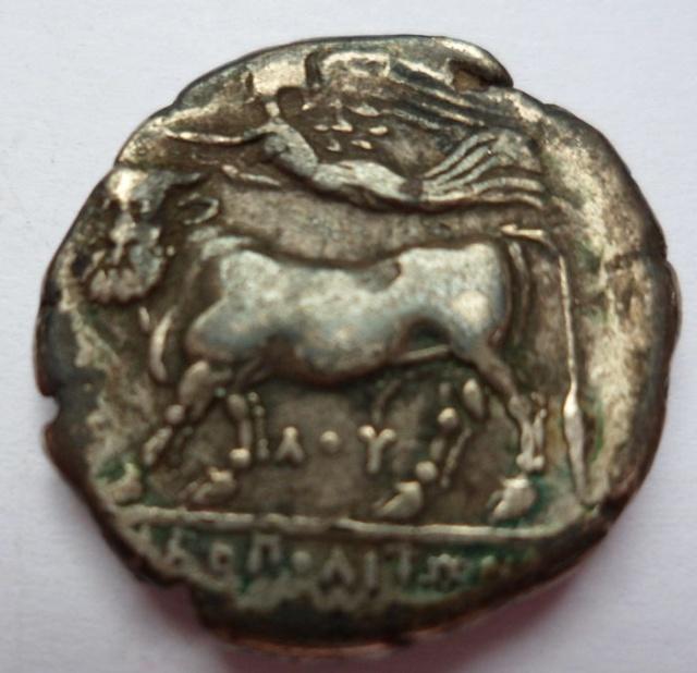 grecque NOMOS Neapolis, Campanie 5ccd3510