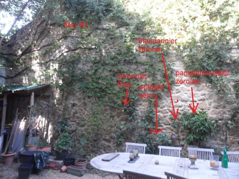 Balcons, Terrasses et Jardins...Plantes et Aménagements... Mur_b110