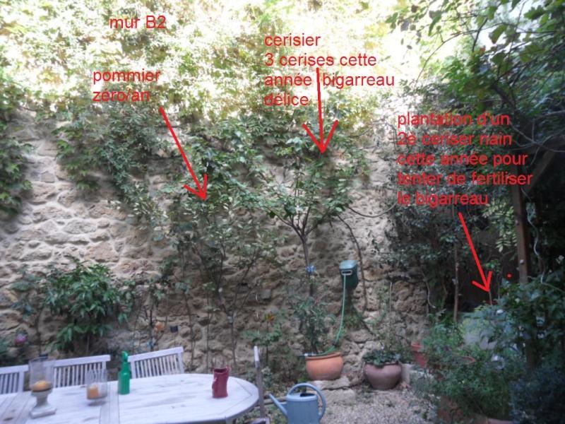 Balcons, Terrasses et Jardins...Plantes et Aménagements... Mur_b210